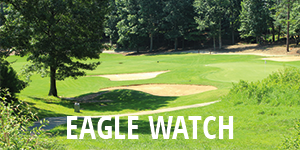 Eagle Watch Homes for Sale - The Jeff Buffo Team