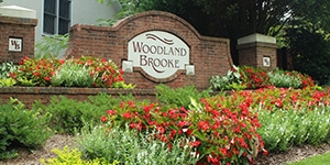 Woodland Brooke homes for sale - The Jeff Buffo Team