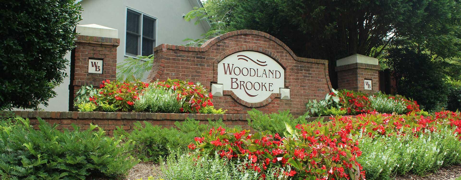 Woodland Brooke