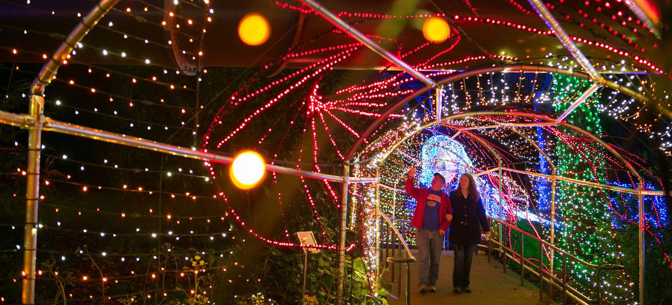 garden-lights-tunnel-Atlanta botanical Gardens