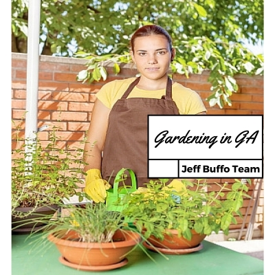 Gardenweb freedigitalphotos.net